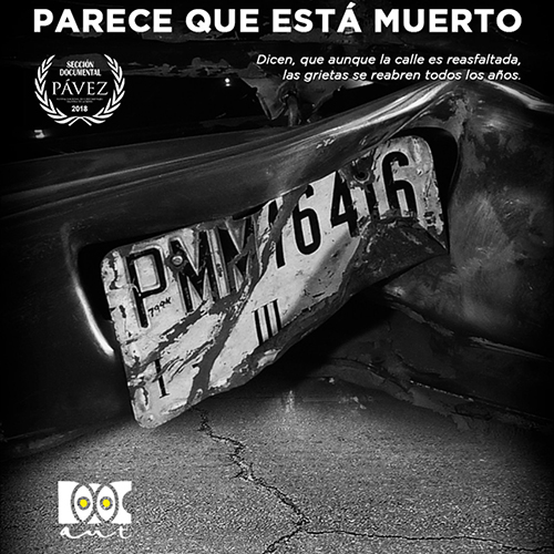 PQEM 1x1